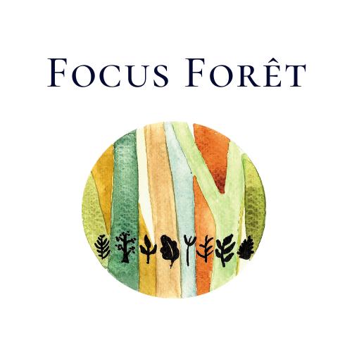 Focus Forêt